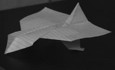 Slant-Nosed+Glider.jpg