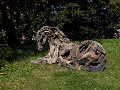 Driftwood Horse Art (14) 11