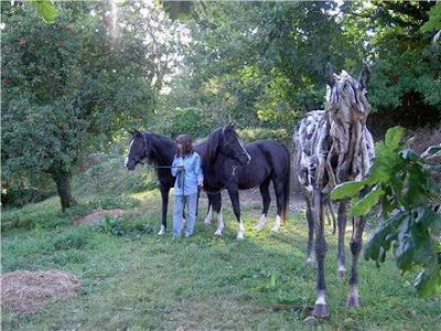 Driftwood Horse Art (14) 7