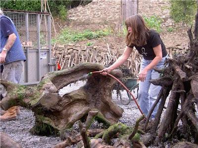 Driftwood Horse Art (14) 4