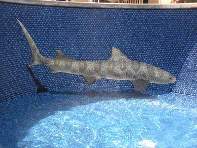 Changing The Look Of Swimming Pool 3D Ceramic Tile Art (11) 8