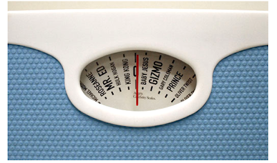 27 Cool and Creative Weigh scales (30) 6