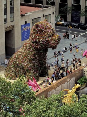Puppy, The Topiary Dog By Jeff Koons (6) 4