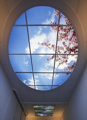 SkyCeiling (7) 3