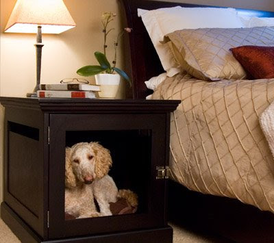 Creative and Modern Furniture for Pets (8) 6