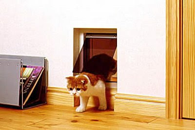 Creative Cat Houses and Cool Cat Bed Designs (21) 19