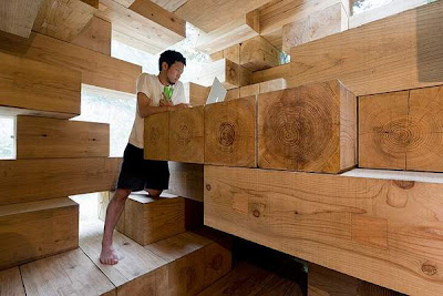Next Generation Wood House (6) 3