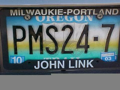 16 Cool and Clever License Plates (16) 3