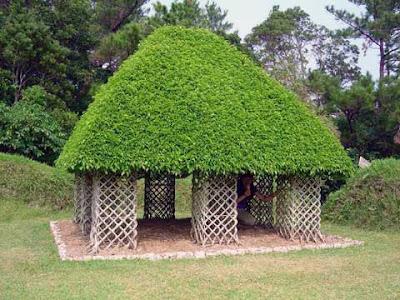 Arborsculpture (3) 3