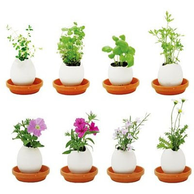 Cool Flowerpots and Creative Planters (60) 3