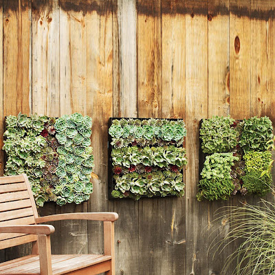 41 Cool and Creative Planters (60) 46