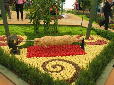 Fruits And Vegetables Art (9) 1