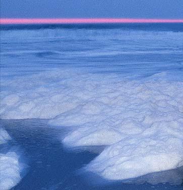 Foam On The Sea Shore
