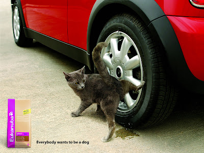 10 Creative Pet Food Advertisements (11) 7