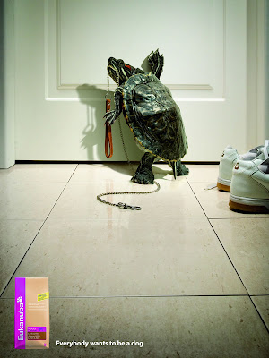 10 Creative Pet Food Advertisements (11) 4