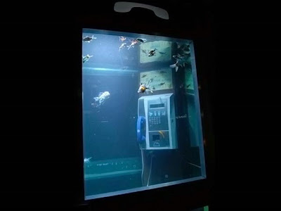 Cool Aquariums and Unusual Fish Tanks Designs (50) 32