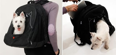 Unusual and Creative Backpacks (30) 19