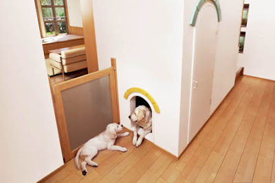 Dog Friendly Home Designs(18) 5