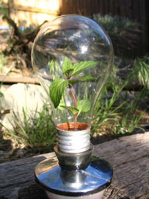 What You Can Do With Old Light Bulbs (30) 1