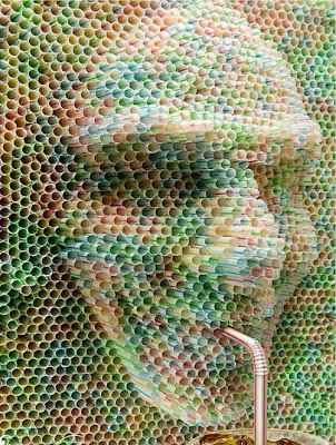 Drinking Straws creations (25) 1