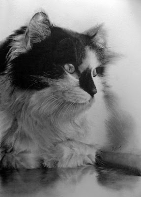 30 Photorealistic Pencil Sketches and Portraits (30) 7