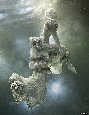 Underwater Photography (21) 17