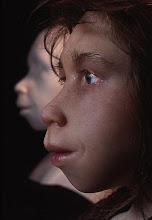 Reconstrucción de un niño neandertal