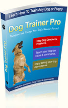 NEW DOG TRAINING GUIDE - DOG TRAINER PRO