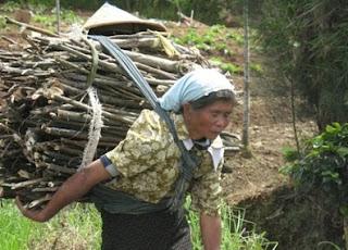 Gambar diatas adalah salah satu contoh betapa kerja kerasnya ibu