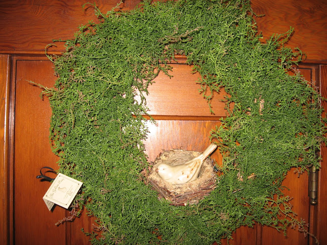 Wild Huck Fern Wreath