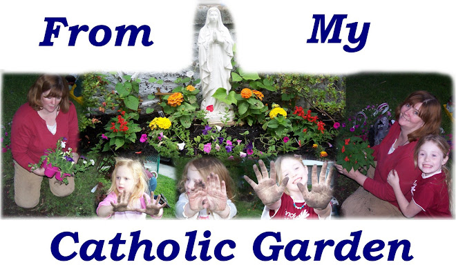 From My Catholic Garden