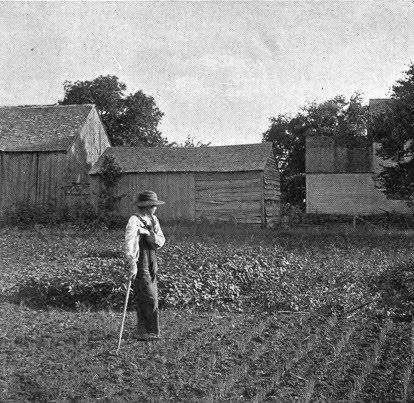 FarmersBoy35.jpg (414×403)