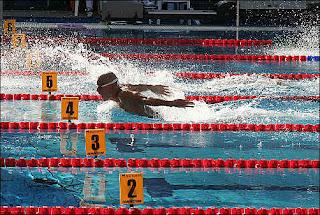 swimming_e