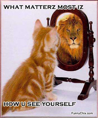 kitteh self esteem