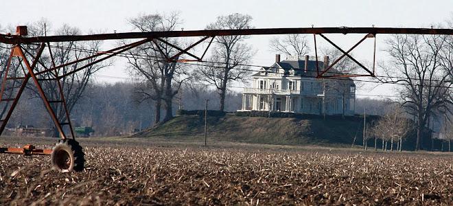 Mount Helena Plantation, Mississippi Delta