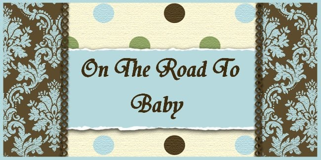 On The Road To Baby...And the Journey After