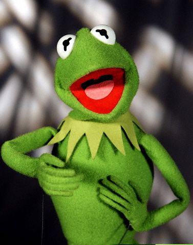 kermit frog. Kermit the Frog has to