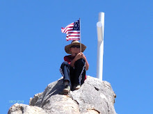 Mojave Cross Remembered