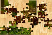 Unsolved Jigsaw Puzzle