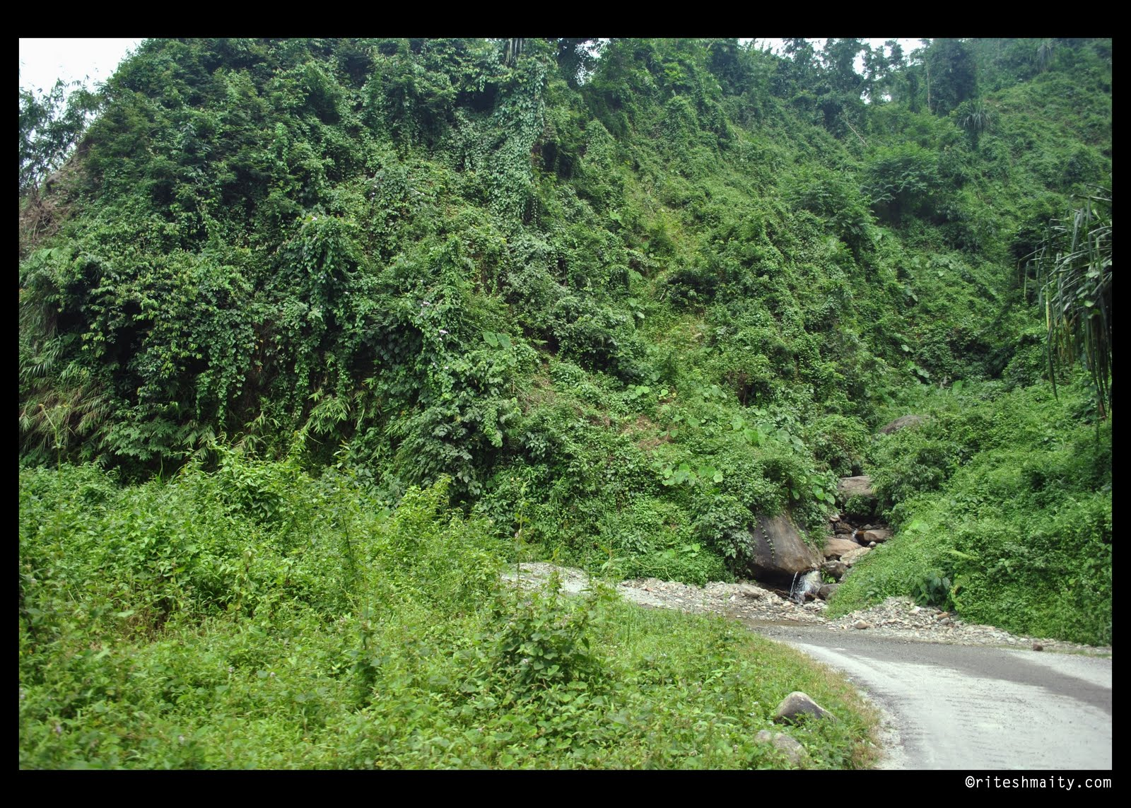 Gorubathan India  City new picture : Travel & Photography: Road to Lava Exploring the Natural Beauty