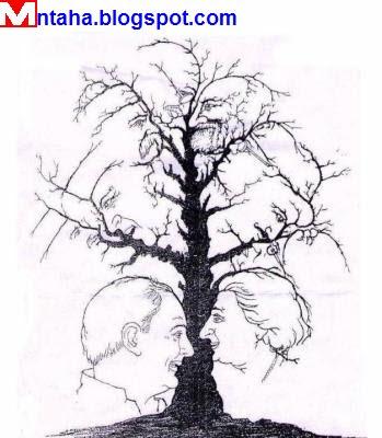 الخداع البصري-الخدع البصرية - منتهى-شجرة أم ماذا