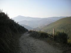 Galicie die Schone