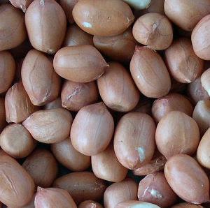 arachides décortiquées seconde variété