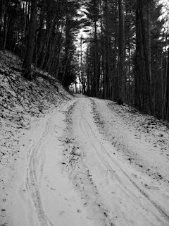 Snowy Mountain biking