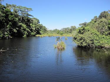 El río Madre de Dios. Perú