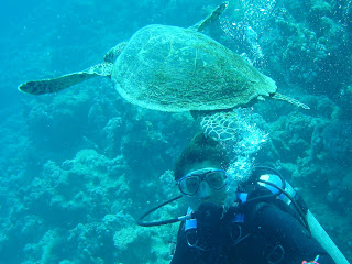 Sharm sott ' acqua