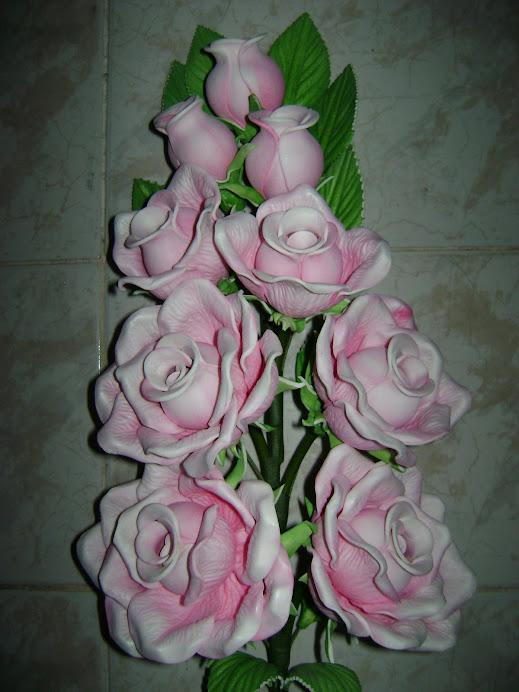 Rosa Média.