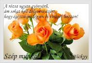 Narancssárga rózsaszál