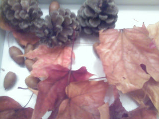 fall decoration of dried leaves, pine cones, and acorns