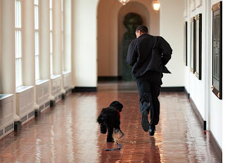 photo of President Obama running with dog Bo by Pete DeSouza